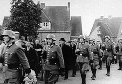 A round-up in Netherlands, 1940s